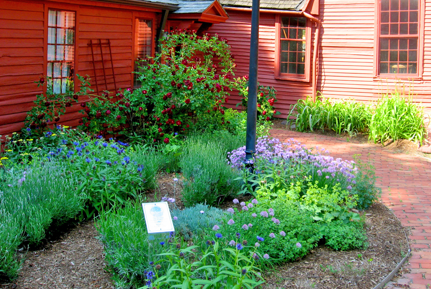 Strong-Howard House herb garden