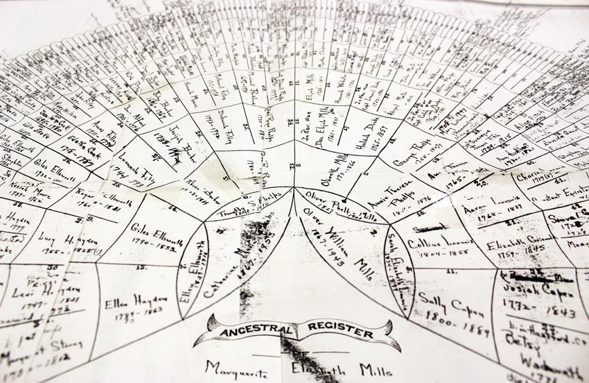 genealogy fan tree