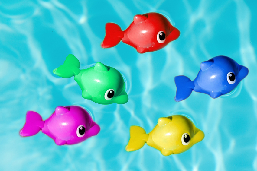 toy fish in pool